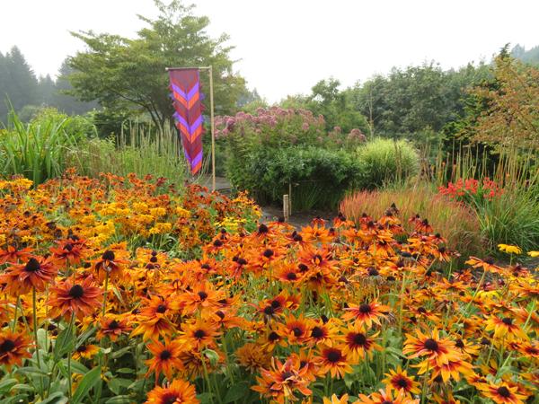 Joy Creek Nursery Featuring Clematis Fuchsia Hydrangea Penstemon Plus Many Others